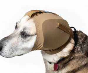 Ohrschutz für Hunde